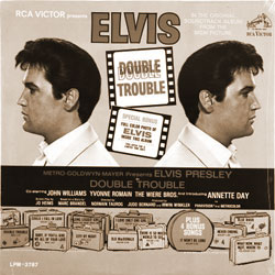 Cover of Double Trouble (1967)