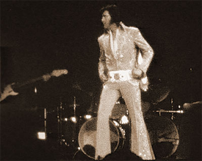Elvis on stage at the Garden